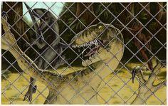 Jurassic Park Raptor, Jurassic Park World, Basic Drawing, Park Art, Prehistoric Creatures, Raptors, Science Fiction, Fantasy, Drawings
