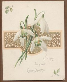 C10922 Victorian Folding Xmas Card: Snowdrops