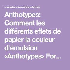 Anthotypes: Comment les différents effets de papier la couleur d'émulsion «Anthotypes« Formules Et How-To «AlternativePhotography.com