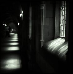 light by Alex Alexander