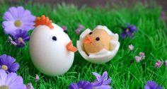 Húsvéti tyúk, és csibéje tojásból Easter Recipes, Easter Food, Breakfast, Food Ideas, Salads, Morning Coffee, Salad, Chopped Salads
