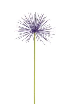 All-weather painted steel alliums can really fool the eye. Set of 2 in your choice of Periwinkle Blue, Petal Pink or Purple.