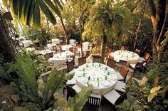 Cafe de Artistes, Puerto Vallarta...amazing restaturant!!