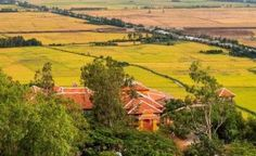 Les rizières de riz - vue du mont de Nui Sam