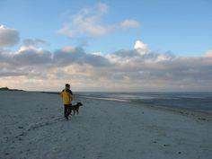 cool An der Nordseeküste ist es immer windig und heute war es dazu auch noch eiskalt. Warm eingemummelt liefen wir Richtung Strand um die Weite der Nordse...