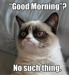 I am sooo not a morning person.