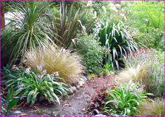 native-plants-nz.jpg (866×613)
