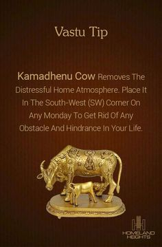 Kamadhenu Cow has heavenly powers, nd is effective in attracting profits from land and agricultural technology. Feng Shui And Vastu, Feng Shui Tips, Mandir Design, Pooja Room Door Design, Talisman, Puja Room, Vastu Shastra, Indian Home Decor, Home Hacks