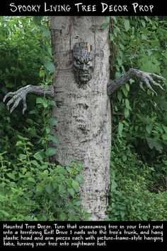 Have your very own haunted tree...