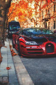 Bugatti Veyron Vitesse..,