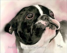 French Bulldog, AKC Non Sporting, Pied, Black White, Pet Portrait Dog Art Giclee Watercolor Painting Watercolor Animals, Watercolor Paintings, Watercolors, Painting Prints, Art Prints, Painting Art, Boston Art, Boston Terrier Dog, Watercolor Portraits