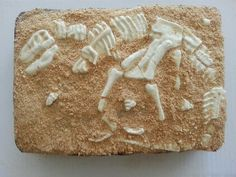 My daughter desperately wants to be a paleontologist someday.  This cake was fitting to celebrate her 13th Birthday.  Mold the bones from white chocolate and cover the cake with crushed graham cracker crumbs.  Use a small brush to expose the bones and you have an archaeological dig!!