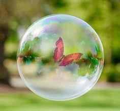 butterfly in a bubble. Pisces like to daydream. Foto Macro, Bubble Balloons, Rainbow Bubbles, Fractal, Blowing Bubbles, Soap Bubbles, Dew Drops, Water Droplets, Art Graphique