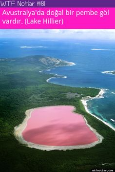 Avustralya doğal pembe göl
