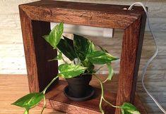 We love this nifty DIY grow box. The flourescent grow light will help the plant flourish indoors.