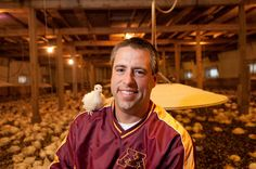 """A Minnesota turkey farmer with a baby turkey (called a """"poult"""") on his shoulder."""