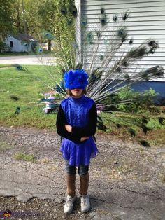 Peacock Costume - 2012 Halloween Costume Contest