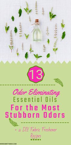 13 Essential Oils to Eliminate Stinky Odors - Plus 3 Odor Blends You'll Love - MintyMixx Essential Oil Spray, Best Essential Oils, Young Living Essential Oils, Natural Air Freshener, Odor Eliminator, Healthy Environment, Essentials, Au Natural, Fabric