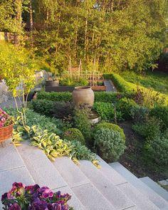 Min köksträdgård är inramad av en ligusterhäck. Jag tycker om tydliga former i trädgården. Jag har valt formklippta klot av havtorn, idegran,rödvide och buxbom som även ger fin form vintertid. Tänk gärna i repriser när ni skapar era gröna rum. Återkommande färger och former skapar lugn #gardendesign #gardening #minträdgårdvidsjön #home