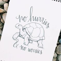 a friend said this to me the other day & i really liked the quote! hope everyone is doing their best to take it easy, especially amongst the back to school rush // fun fact: giant tortoises can walk as slow as 0.23 mph! . . . #gianttortoise #tortoisesofinstagram #noworries #ink #inkart #drawing #sketchbook #typography #handlettering #animalart #artistsofinstagram #theletteringtribe #royaleartfeatures #blackworknow