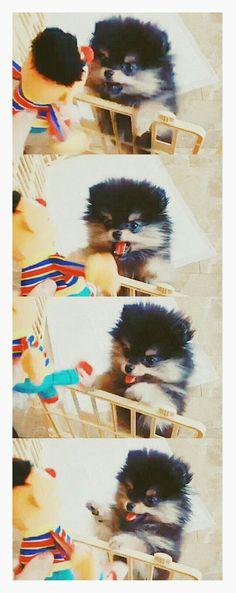 Ahhhhh it's so fluffy I'm gonna die!!!