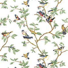 Thibaut; T3118-Little Bird