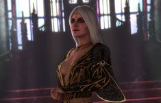 Witcher 3 Art, Ciri Witcher, The Witcher Game, The Witcher Wild Hunt, Character Portraits, Character Art, The Last Wish, Triss Merigold, Female Armor