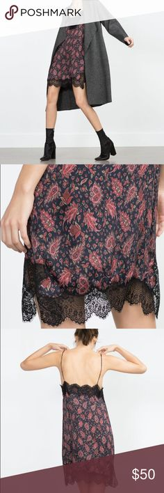 Zara Woman paisley lace slip dress size Small New with tags. Navy and red paisley slip dress with lace details. No trades. Zara Dresses Mini