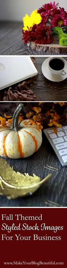 Fall themed styled stock photos for your blog and social media.  Make your blog beautiful and profitable with styled stock photography!