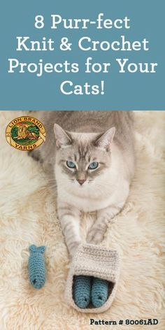 8 Purr-fect Knit & Crochet Projects for Your Cats! 8 Purr-fect Knit & Crochet Projects for Your Cats! The post 8 Purr-fect Knit & Crochet Projects for Your Cats! Gato Crochet, Crochet Cat Toys, Knitted Cat, Crochet Animals, Crochet Crafts, Knit Crochet, Knitting Projects, Crochet Projects, Knitting Patterns