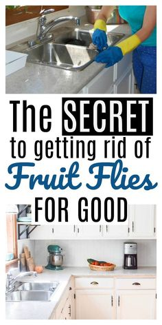 This is the BEST way to get rid of Fruit Flies! It's Non-Toxic and won't leave flies all over your kitchen in bowls of juice... Get rid of fruit flies FOR GOOD!