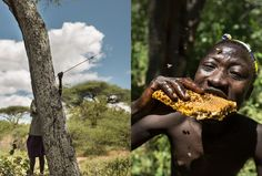 We Are What We Eat: Hunting the Hadza Way With Bows, Arrows, and Ingenuity | PROOF