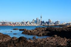 Take a closer look around Auckland with this collection of unique local photographs. Use our image galleries to inspire and help you plan your next Auckland trip. South Pacific, Pacific Ocean, State Of Arizona, Us Images, Commonwealth, Best Cities, British Isles, Cityscapes, Auckland