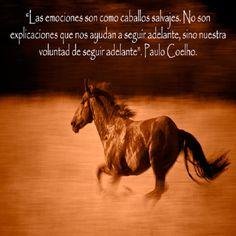 Las #emociones son como... #PauloCoelho  #Frases  #Palabras