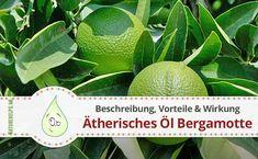 Bergamottöl ätherisches Öl