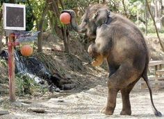 Who wants to play basketball with me? :D