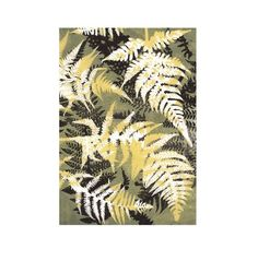 Giclee Print from original botanical fine art by Stef Mitchell on Archival paper Bring the outside in with nature Plant Growth, Nature Prints, Handmade Books, Ferns, Animal Print Rug, A4, Giclee Print, Print Patterns, Printmaking Ideas