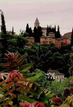 Granada, Cologne, Cathedral, Building, Travel, Spain, Urban Sketching, Cities, Pictures