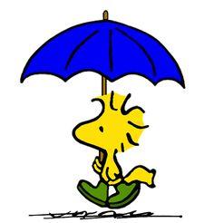 Woodstock Prepared for Heavy Rainfall