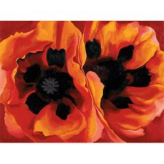 O'Keeffe: Oriental Poppies (custom print)