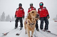 Ski patrol this will be me someday