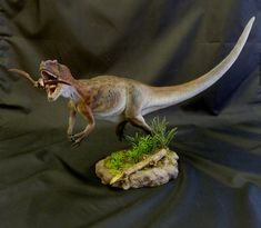 Allosaurus 1 by Baryonyx-walkeri.deviantart.com on @deviantART
