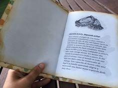 """Primera página del cuento para una boda de oro titulado """"Amor por la grande"""" Una historia planteada como si fuera un menú con primer, segundo plato y postre. Una pareja taurina y de buen comer que quedó encantada"""