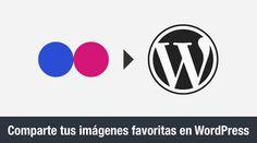 5 plugins para mostrar imágenes de Flickr en WordPress [...]