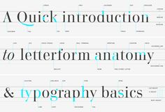 Even though this website is in a different language, it has a nice layout. I like this infographic showing typeface terminology