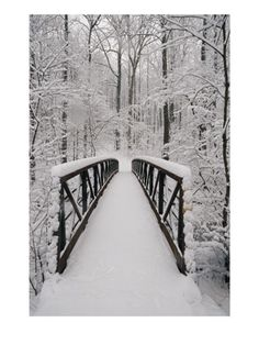 snowy bridge!