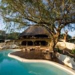Into the wild: African safari house  it really is wild