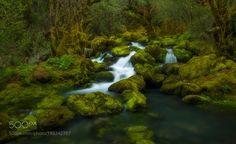 Green Breath... by siogunat #nature #mothernature #travel #traveling #vacation #visiting #trip #holiday #tourism #tourist #photooftheday #amazing #picoftheday