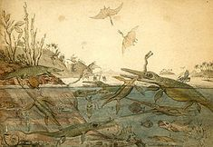 Duria Antiquior famous watercolor by the geologist Henry de la Beche  based on fossils found by Mary Anning. From Wikimedia Commons.