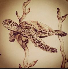 Woodburned Honu sea turtle pyrography  by LiveLoveSurfDesigns woodburning hawaii
